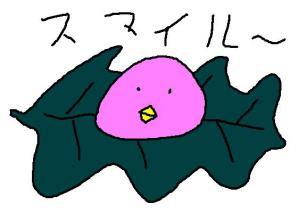 member_kashiwa.jpg