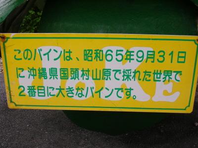 okinawa048.JPG