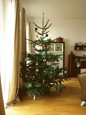 s-tree2.jpg