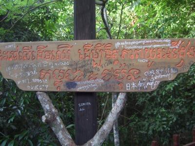 s-treehouse1.jpg